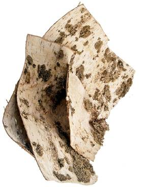 Birch Bark - Other insulation materials - 310-020 - 1