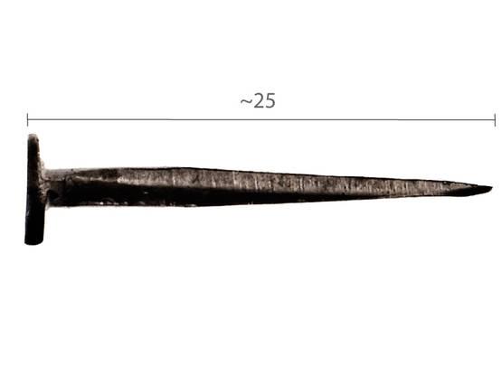 Nupinaula_891-022_3.jpg